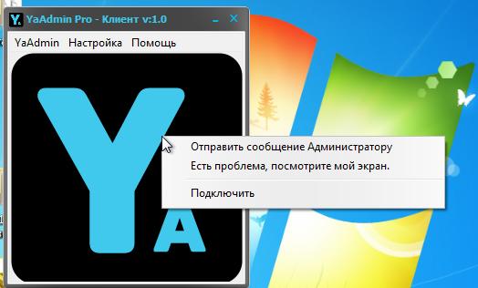 Отчет - YaAdmin Pro